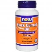 Now Foods Black Currant Oil 500 mg 100 softgels