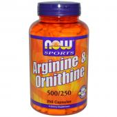 Now Foods Arginine & Ornithine 500 mg 250 caps