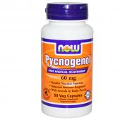 Now Foods Pycnogenol 60 mg 50 vcaps